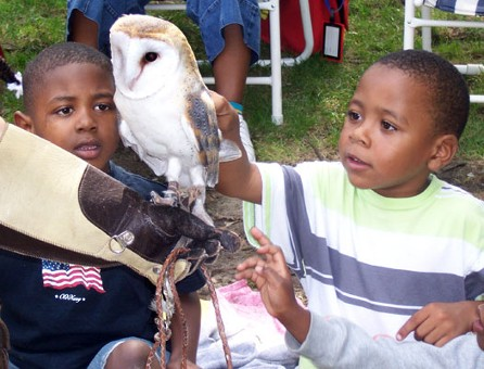 Kids with an Owl - Preschool Activities